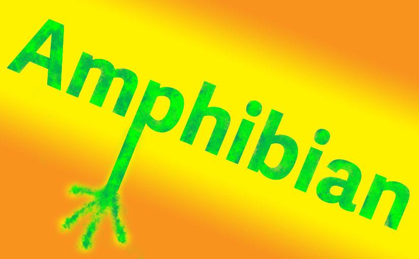 ハーバード卒のコナン・オブライエンさんが教えてくれる英単語『Amphibian』 – セサミストリートの動画