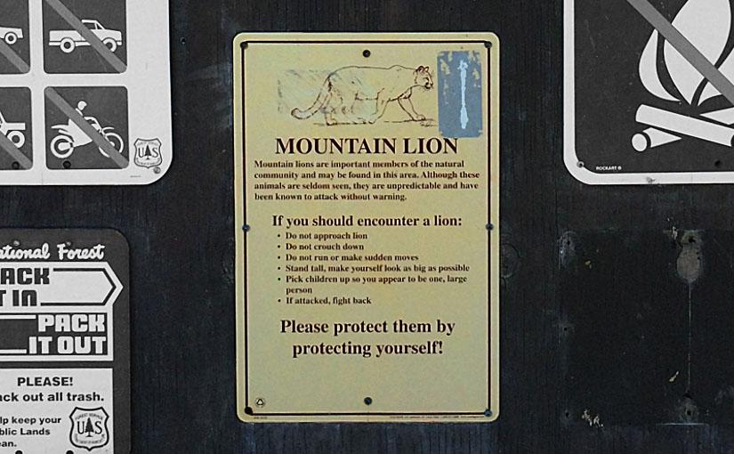 マウンテン・ライオンの対処方が書かれた看板